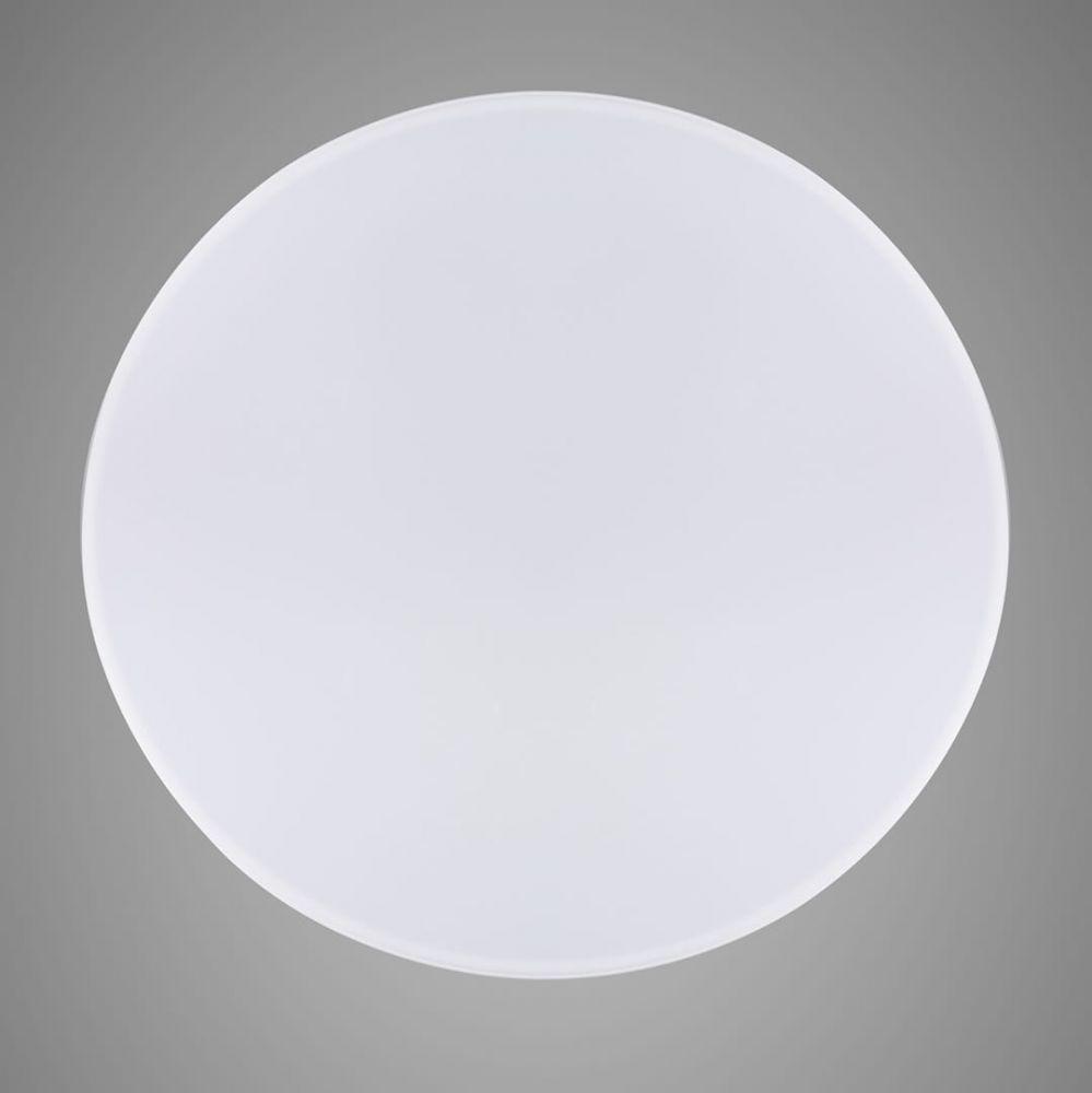 HONEY light 000266