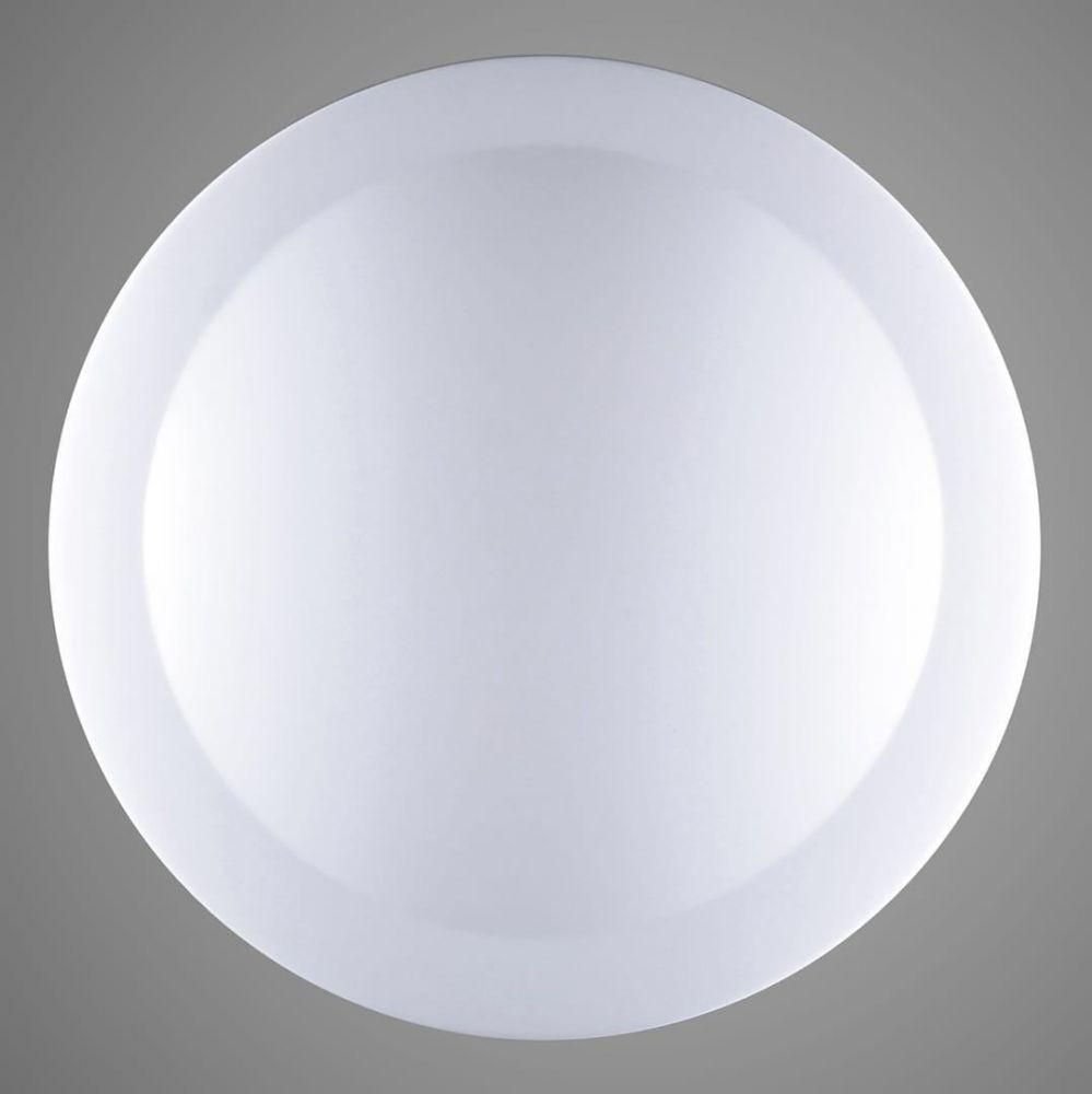 HONEY light 000267